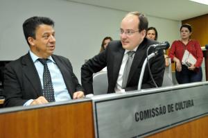 Comissão de Cultura