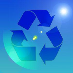 Instituto Pró-Verde pode se tornar entidade de utilidade pública
