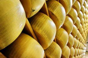 conselheiro-pena-produz-melhor-queijo-prato-do-brasil